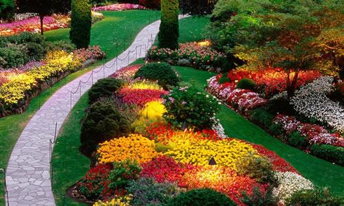 Landscape Design Fort Lauderdale Fl Arbor Tree Care